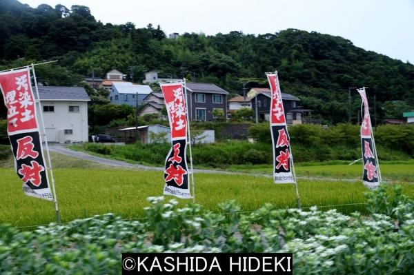 汚染土壌反対の旗