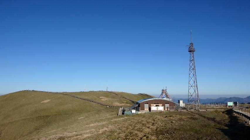 剣山の山頂ササ原