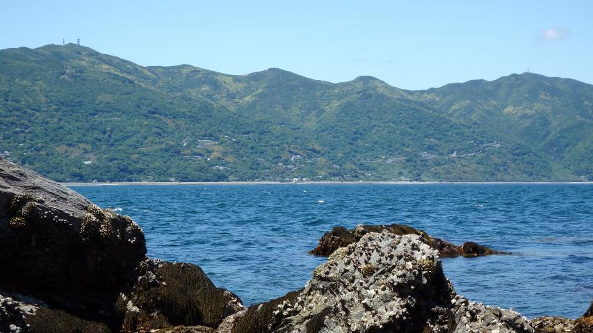 淡路本島の山々