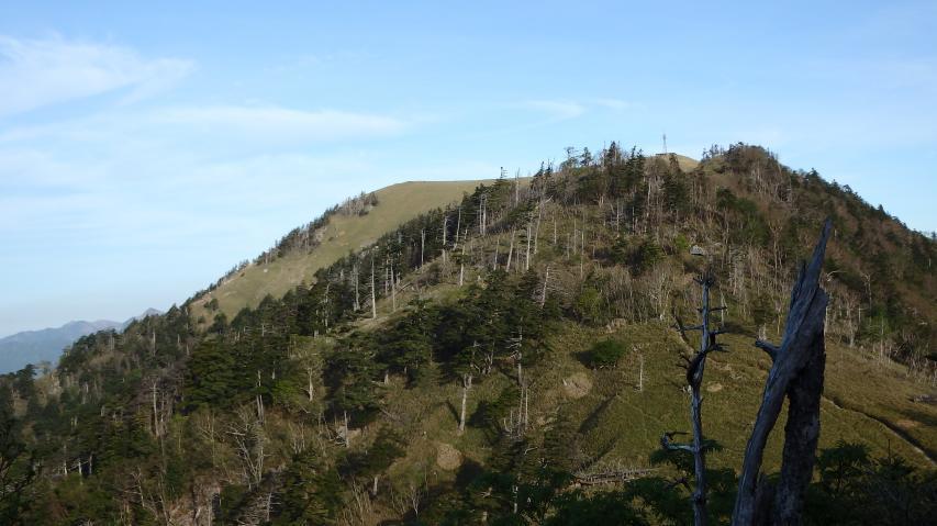 ハクサンシャクナゲ自生地から剣山山頂を眺める