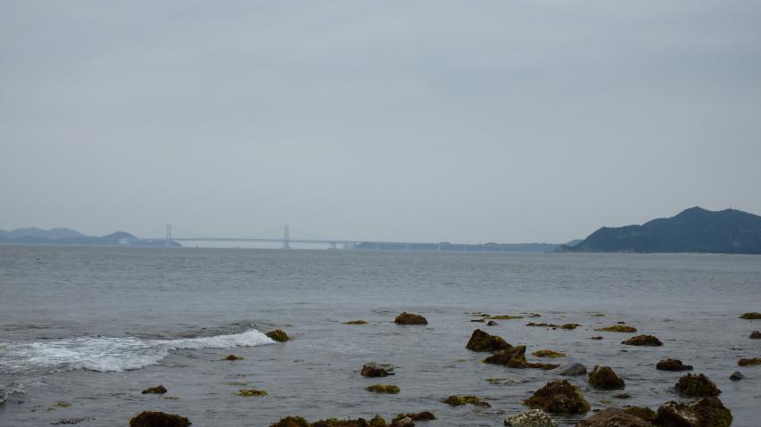大鳴門橋が見える