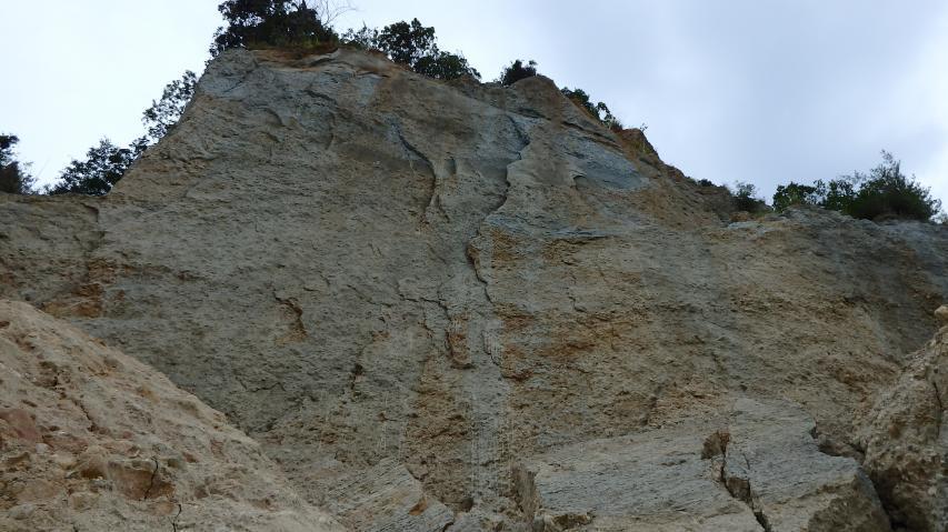 海食崖の一部が崩れた