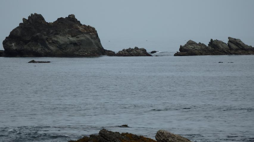少し沖の素敵な岩