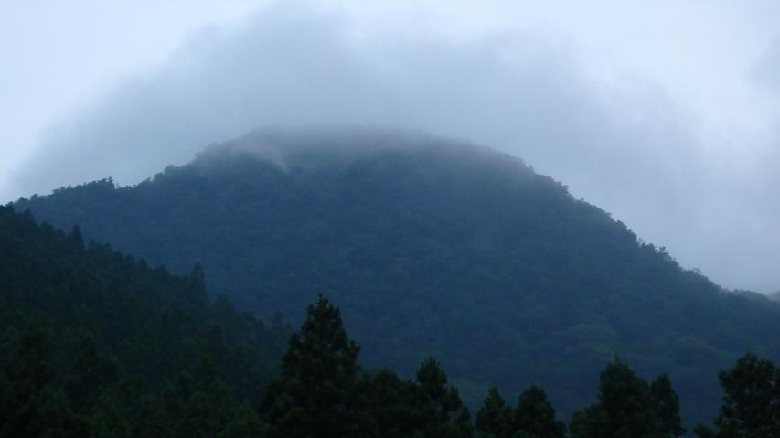 山頂はガスっています