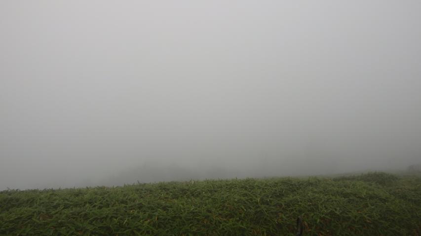 矢筈山も見えません