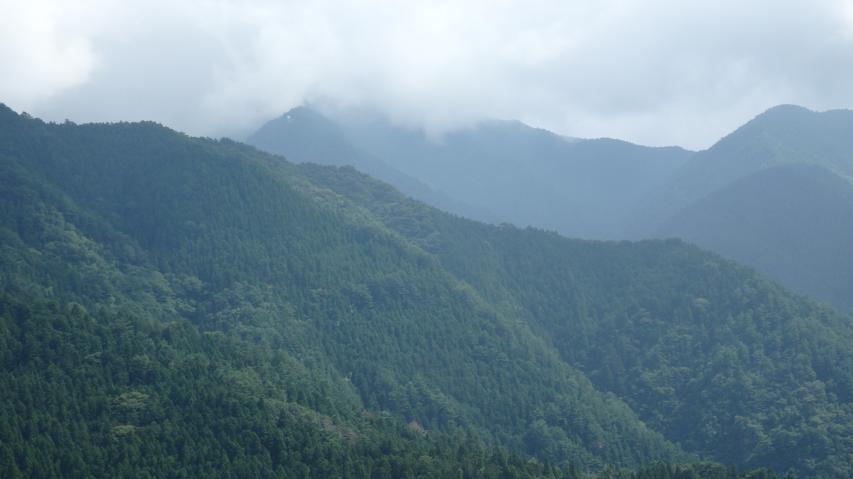 川井峠から西砥石権現を仰ぎ見る