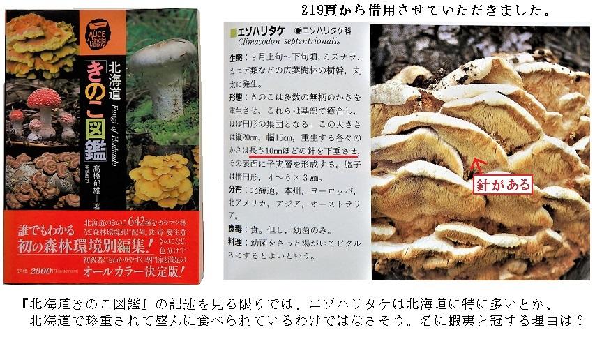 『北海道のきのこ図鑑』から