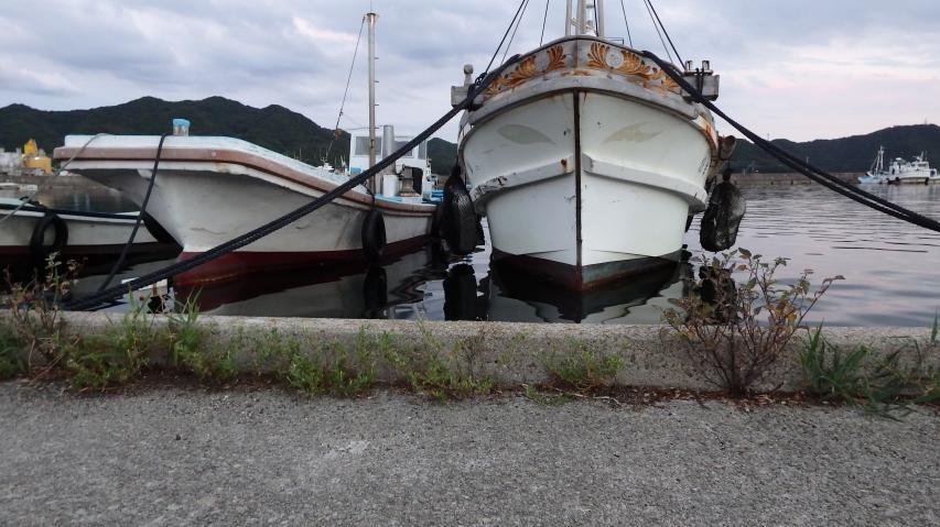 岸壁とほとんど同じ高さに漁船が並ぶ