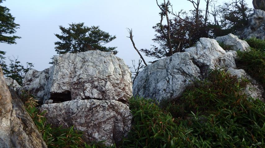 山頂の石灰岩