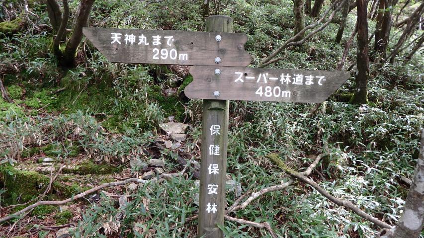 山頂まであと290m