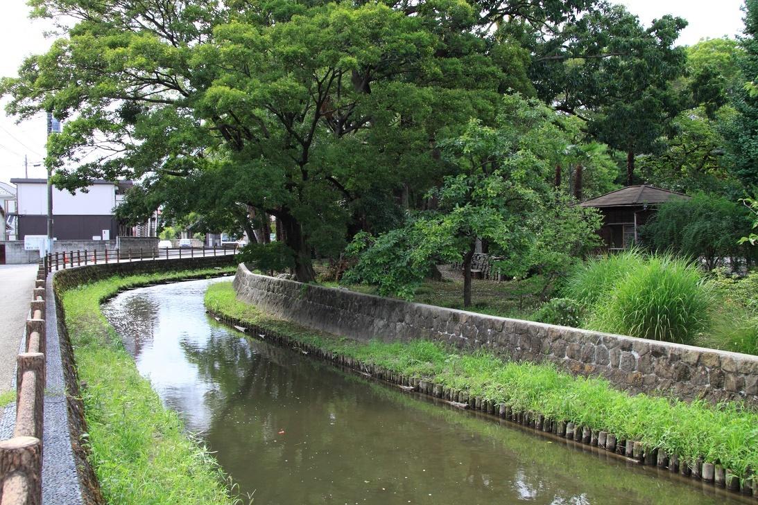 翁島別邸裏の巴波川②