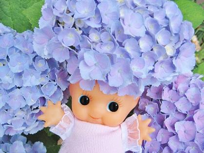 もりもり紫陽花アフロです
