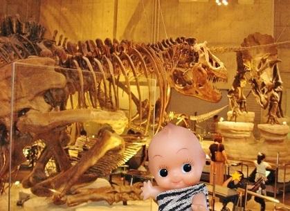 恐竜エリアです