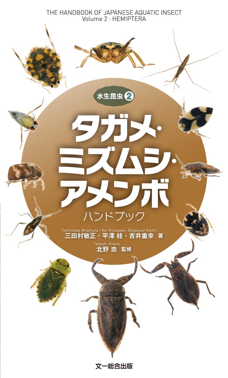 170707水生昆虫2