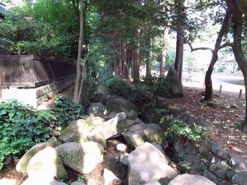 井の頭恩賜公園13