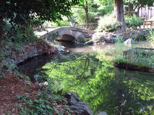 井の頭恩賜公園14