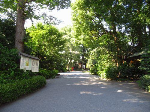 阿佐ヶ谷神明宮7