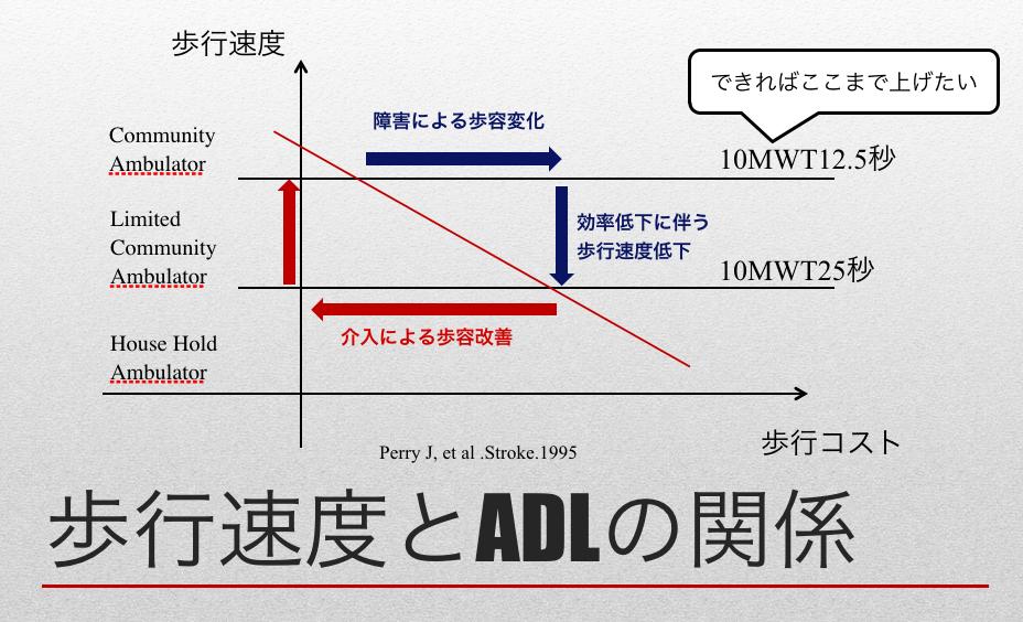 歩行速度とADLの関係