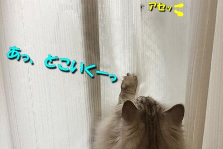 いざ!実戦6
