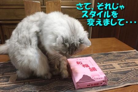 初めての『お福餅』5