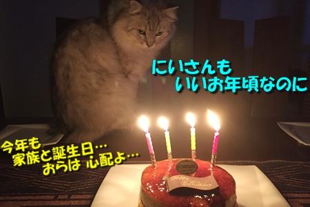 おにいの誕生日18
