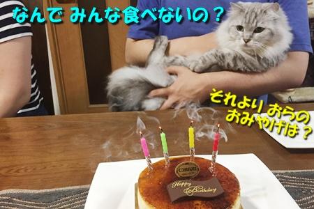おにいの誕生日19