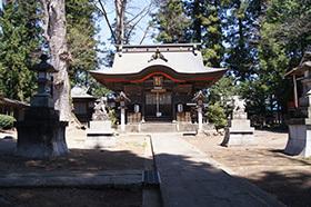 170424大宮岩鼓神社の欅⑦