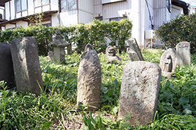 170425上津の姥桜⑥