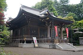 170603青渭神社の欅⑩