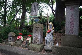 170621恵隆寺のヒノキ⑤