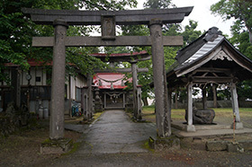 170621御稷神社千年欅⑧