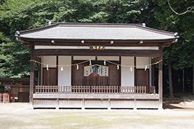 170702伊奈町 氷川神社の杉