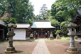 170707藤岡神社のケヤキ⑦