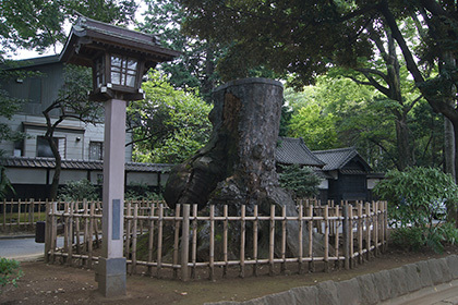 170826大宮氷川神社⑦