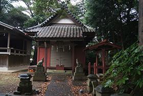 170902秋葉神社スダジイ⑦
