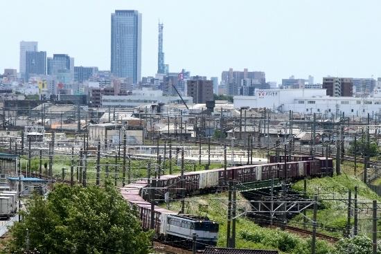 ⑦EF65貨物列車 (550x367)