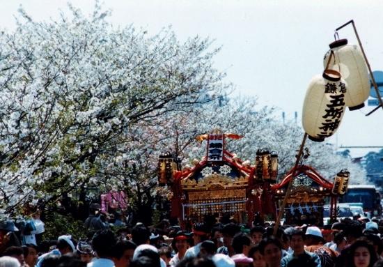 ②鎌倉祭り神輿