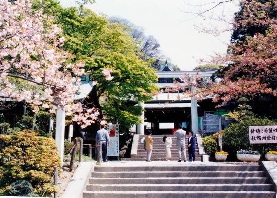 ⑦鎌倉宮4月