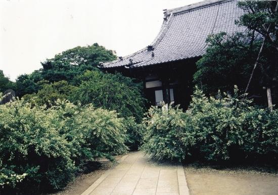 ②宝戒寺萩