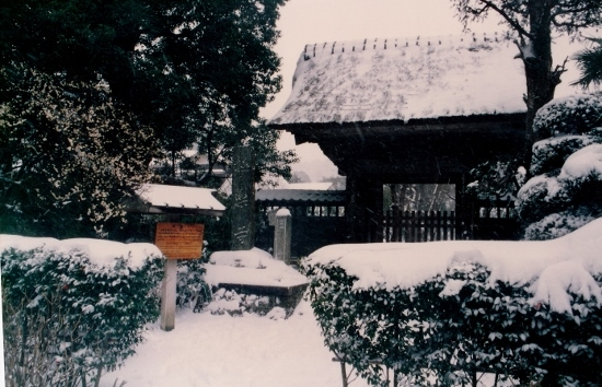 ㉑極楽寺雪