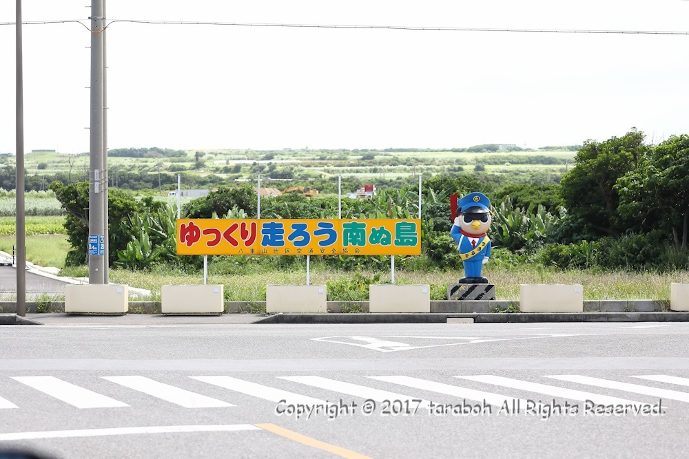 5DM42559_1.jpg