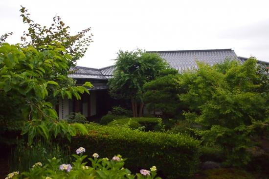 170628_03本館と木々