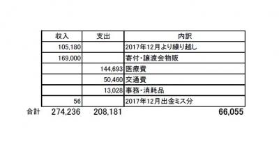 2017年上半期会計報告用