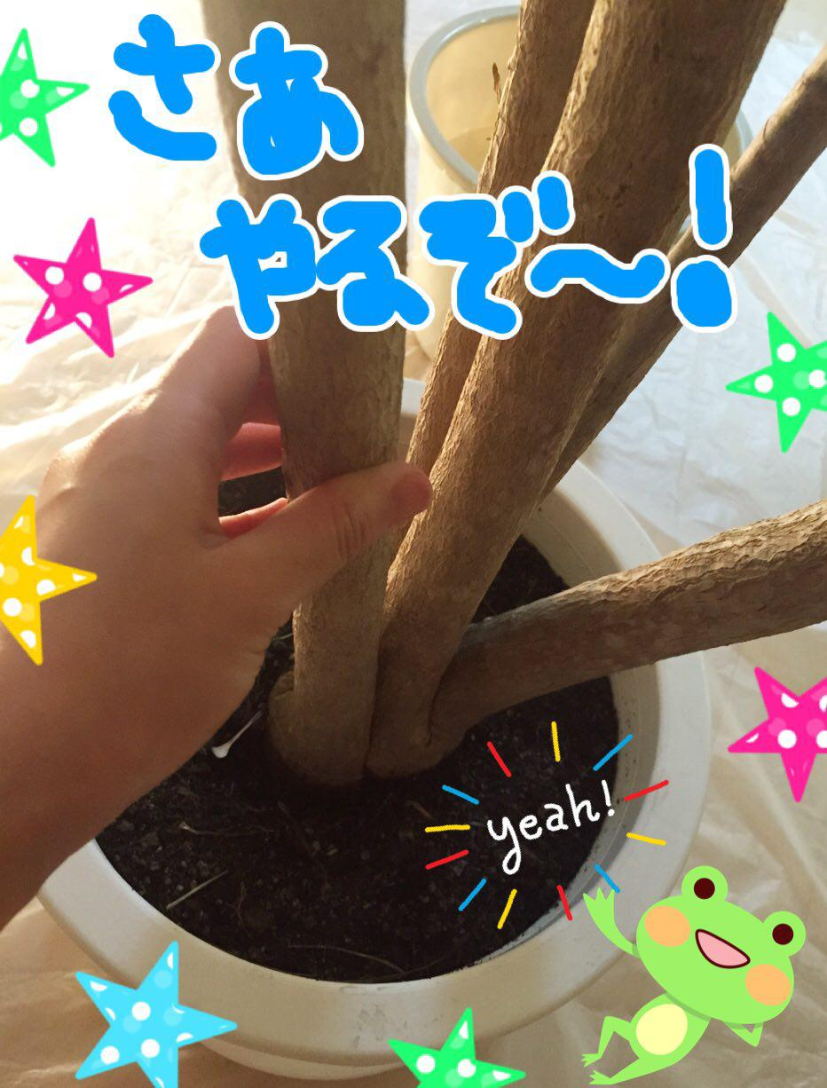 photo_2017-07-14_01-39-56 (2)