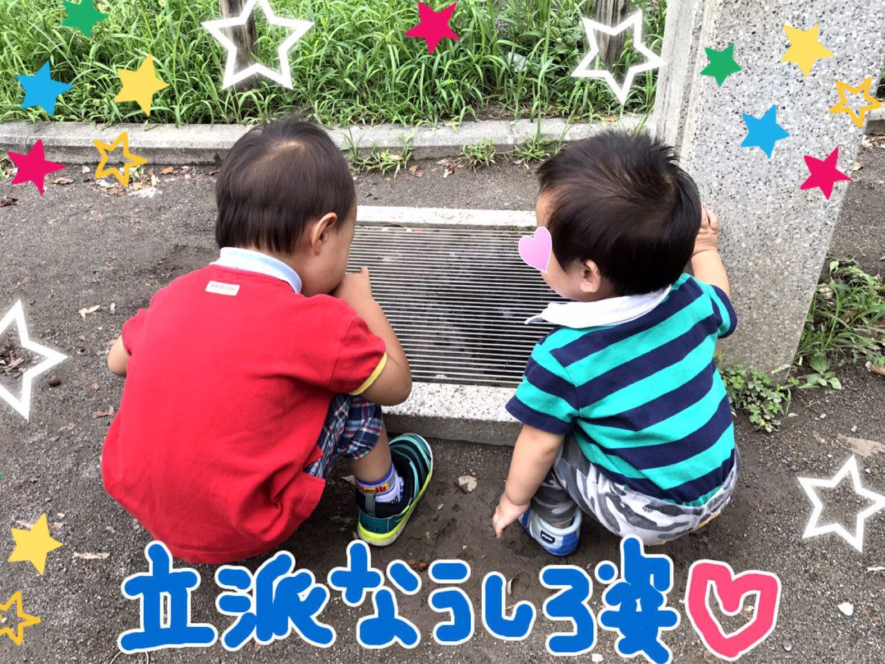 photo_2017-08-07_00-36-33 (2)