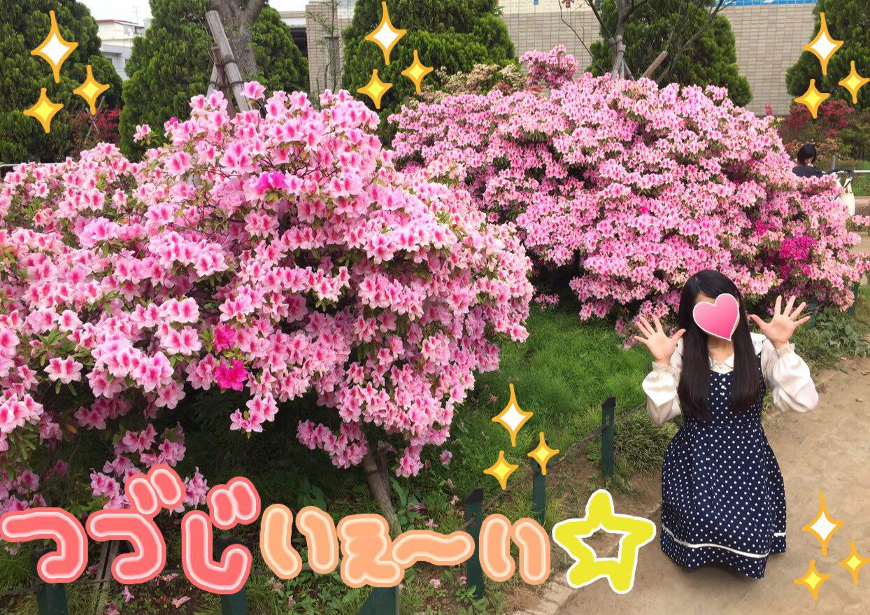 photo_2017-05-09_22-59-06.jpg