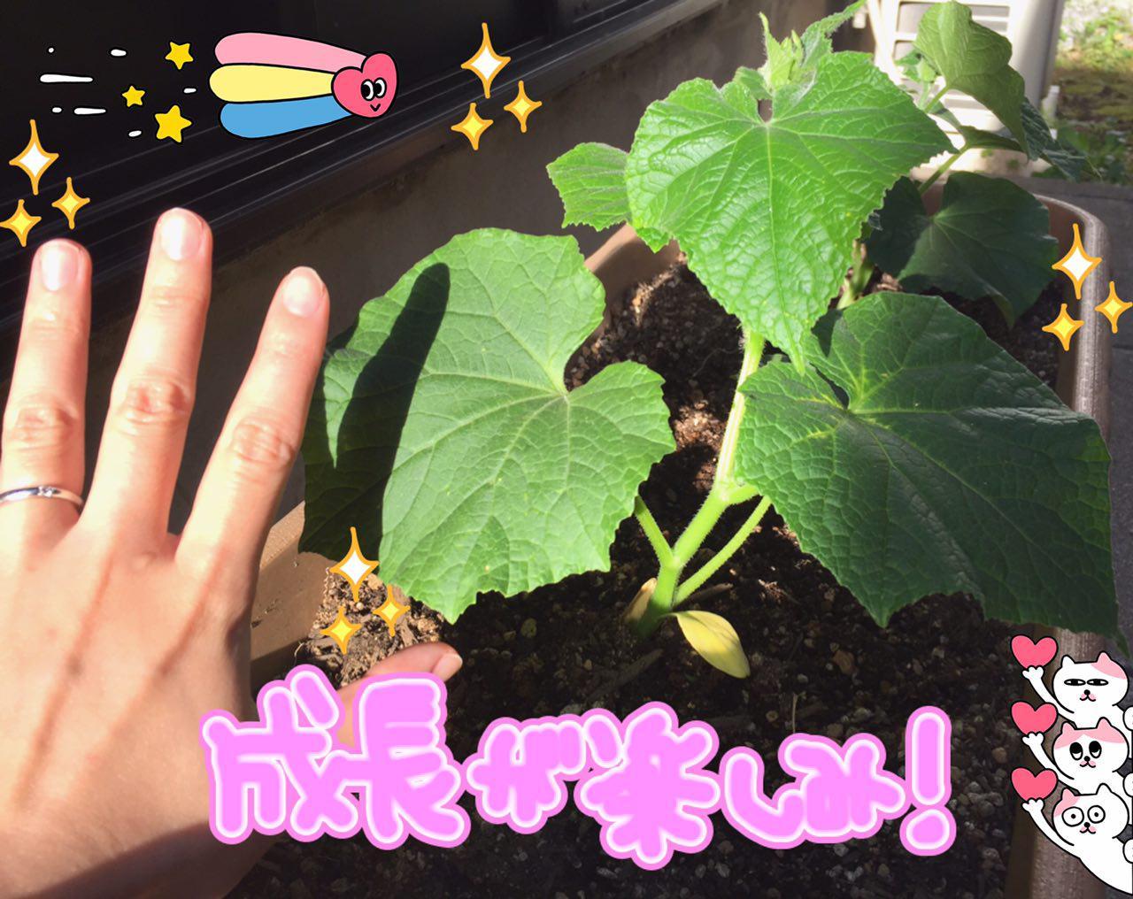 photo_2017-05-24_00-06-49.jpg