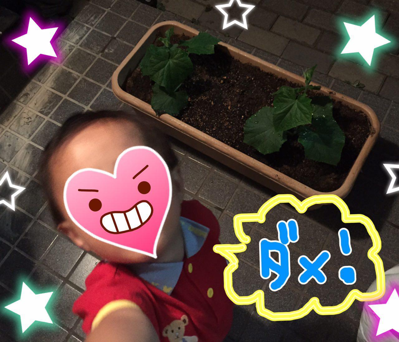 photo_2017-05-25_00-30-11.jpg