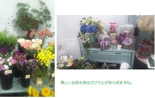 かわいいお花屋さん 美しいおはな