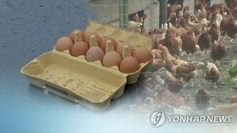 韓国産の卵から殺虫剤検出(470x264)